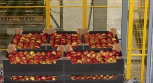 IERiGŻ: Rośnie eksport krajowych owoców