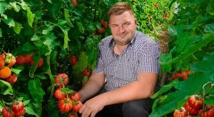 Producent pomidorów: Wybrałem uprawę tradycyjną w ziemi. Stawiam na jakość (zdjęcia)