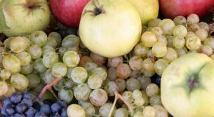 Libańczycy będą dostarczać jabłka, winogrona i cytrusy na rosyjski rynek
