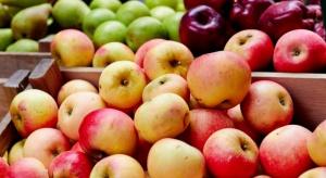Ceny jabłek wczesnych odmian wahają się między 0,75-2,5 zł/kg