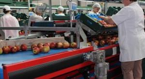 Grupy producenckie najdotkliwiej odczuły skutki embargo