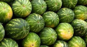 Rumunia: Bardzo niekorzystne tegoroczne zbiory arbuzów