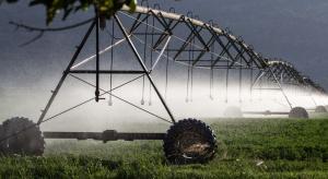 """WWF: Potrzeba """"bardziej racjonalnej konsumpcji"""" i zrównoważonej produkcji żywności"""