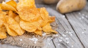 Rekordowe plony ziemniaków w RZD SGGW do przetwórstwa na chipsy