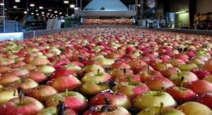 Zagraniczne podmioty mogą przejmować grupy producentów owoców w Polsce?