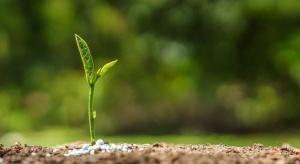 Jak nawozić aby dostarczyć roślinom tylko brakujące składniki?