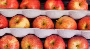 Eksport jabłek napędza wzrost eksportu owoców