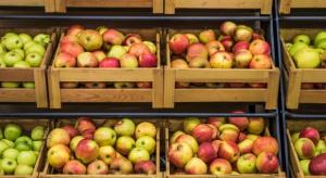 W sezonie 2016/2017 wzrośnie globalna produkcja jabłek