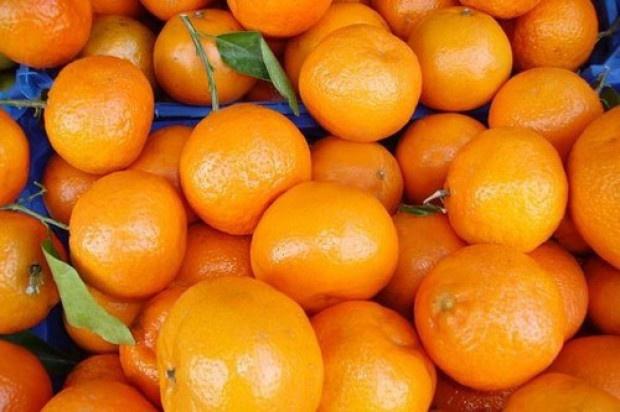 IERiGŻ: W tym sezonie zwiększy się import cytrusów