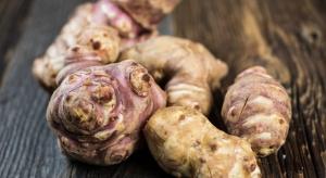 Rośnie popularność mało znanych warzyw korzeniowych