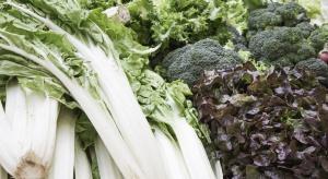 Brytyjskie sklepy ograniczają sprzedaż sałaty lodowej i brokułów