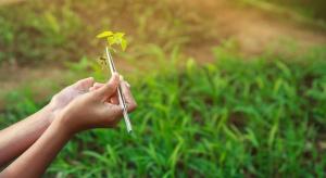 Wczesne wykrycie chorób roślin za pomocą testów DNA pomoże w ograniczeniu ŚOR?