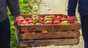 ARR przypomina o obowiązku zawierania pisemnych umów na dostawę produktów rolnych