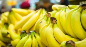 Większa produkcja bananów w Turcji