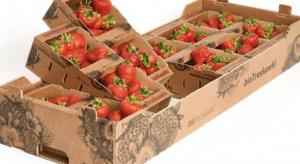 Polski producent opakowań do owoców nominowany w konkursie na Fruit Logistica
