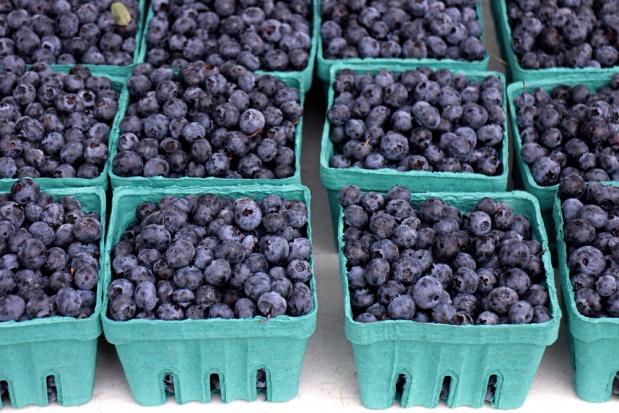 Polish Berry Cooperative promuje nowy, wyższy standard zbioru borówki (video)