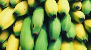 Import bananów do krajów UE - dominują państwa Ameryki Łacińskiej