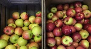 Ekspert: Można oczekiwać dalszych sezonowych wzrostów cen jabłek