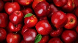 Polskie jabłka podbiją Malezję?