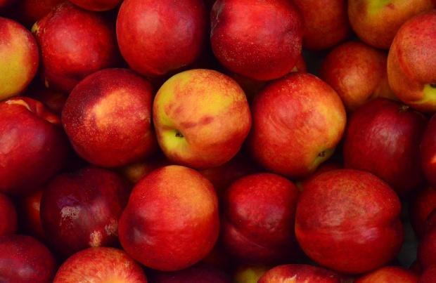 Polscy producenci i przetwórcy owoców powinni szukać odbiorców w Indiach