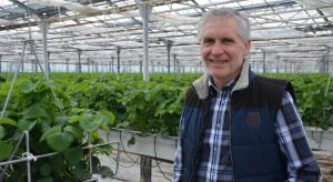 Zbiory od połowy kwietnia. Z wizytą u producenta owoców jagodowych w szklarniach (zdjęcia)