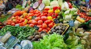 Holandia - światowy lider w eksporcie owoców i warzyw