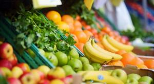 Hiszpania, Holandia i Niemcy największymi dostawcami owoców i warzyw do Polski