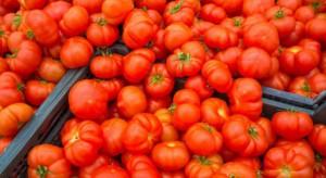 Wojna pomidorowa między Turcją a Rosją nadal niezakończona