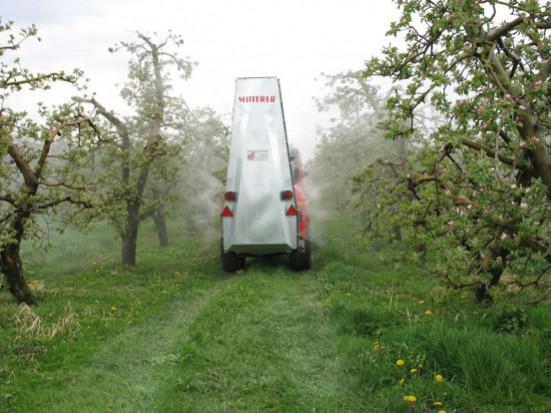 Parch jabłoni – zabiegi interwencyjne