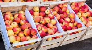 Wzrost cen jabłek w Polsce przełożył się na poziom cen jabłek na rynku ukraińskim