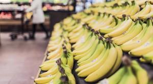 Fundacja Kupuj odpowiedzialnie zachęca do śledzenia procesu produkcji bananów