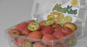 Członkowie Stowarzyszenia MiniKiwi będą sprzedawać owoce pod wspólną marką (foto)