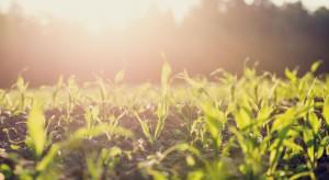 Rolnik z Mazowsza: Ekologia mi się opłaca