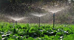 Maliszewski, Boguta: Prawo wodne jest zdecydowanie niekorzystne dla polskich ogrodników