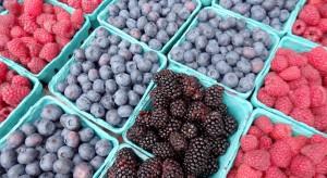 Rośnie popularność owoców jagodowych – mimo wysokich cen