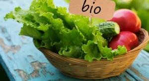 Wzrasta aerał upraw ekologicznych we Francji