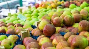 Bronisze: Jabłka po 2-3 zł/kg, gruszki po 3,5-5 zł/kg, a śliwki nawet po 6 zł/kg
