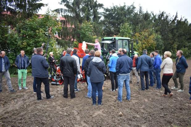 Nowe możliwości odkażania gleby na plantacjach truskawki