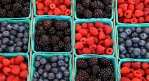 Polska Wschodnia - owoce miękkie, dużo pieczarek, trochę jabłek i sporo warzyw