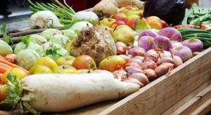 Trzeba zmniejszyć handel chorymi roślinami