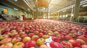 Organizacje producentów będą miały więcej czasu na przygotowanie programów operacyjnych