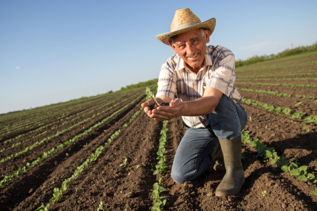 Mieszkańcy miast nie doceniają pracy rolnika