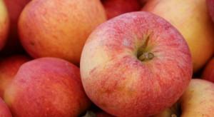 Ukraina szuka nowych odbiorców owoców