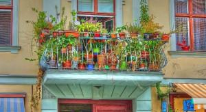 Włochy: Ulga podatkowa za zieleń na balkonach i w ogródkach