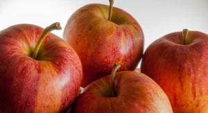 Firmy spożywcze z Łódzkiego promują m.in. jabłka w chińskim Chengdu