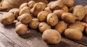 Ziemniaki - dlaczego warto je spożywać?