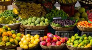 Szykuje się rekordowy rok w handlu owocami tropikalnymi