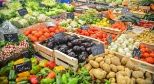 Rynek warzyw - analiza IERiGŻ