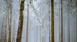 Pogoda pod znakiem opadów deszczu, deszczu ze śniegiem i śniegu