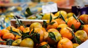Rynek Bronisze: Dostatek cytrusów. Warzywa droższe niż przed rokiem
